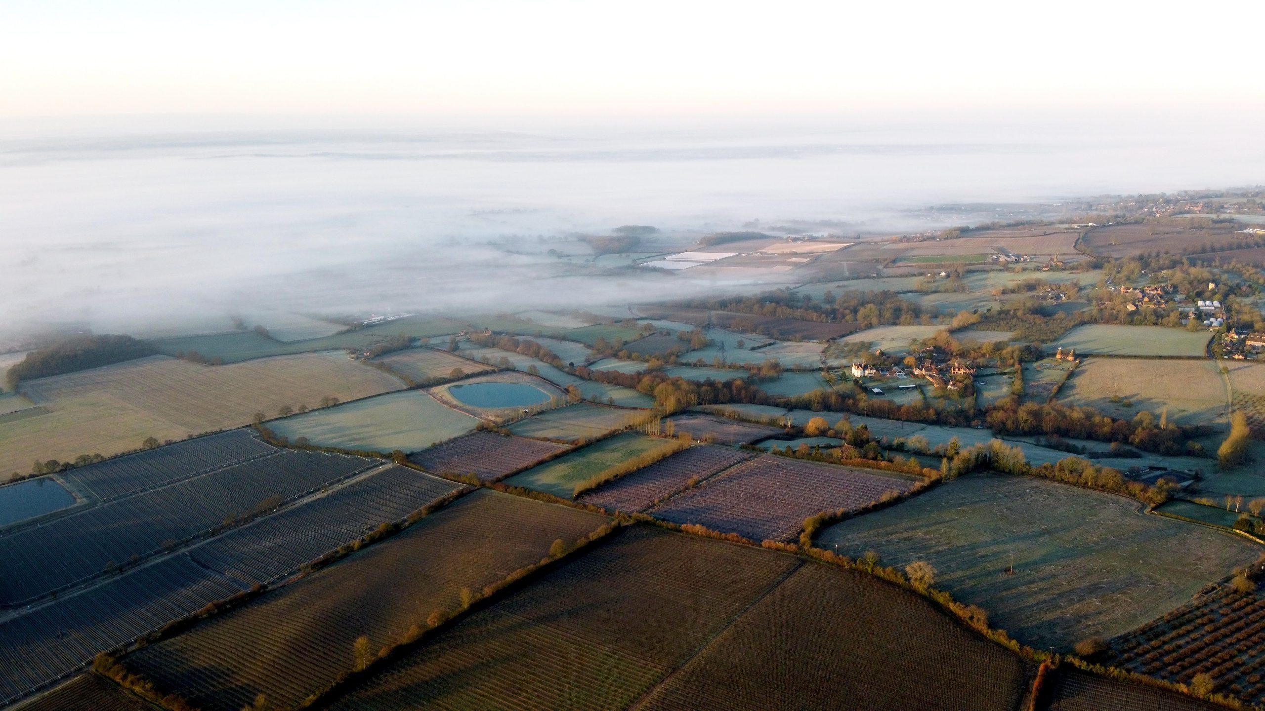 Waarom Vlaanderen 100.000 kilometer haag nodig heeft